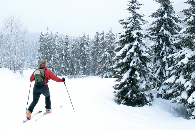 Tips to Consider When Choosing a Skiing Holiday Resort